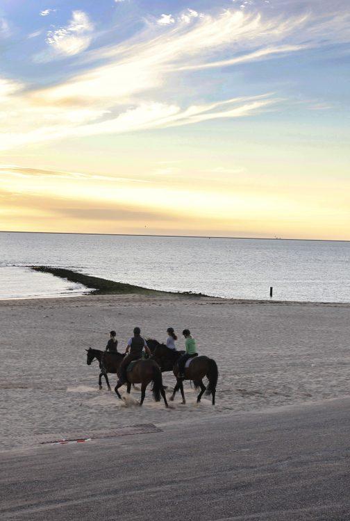 Strand Den Helder